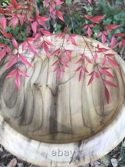Exquisite Southern Magnolia Wood 11 Bowl Signed Table Centerpiece Fruit Exotic