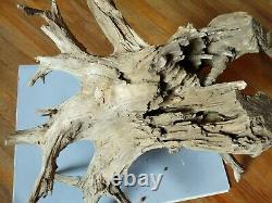 HUGE 2.5 X 2 FEET DRIFTWOOD Tree Trunk ROOT FOR TABLE FURNITURE CENTERPIECE
